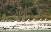 Rishikesh Marine Drive Camping Packages